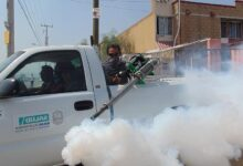 Photo of What You Should Do Before Spraying Your House With Pesticides