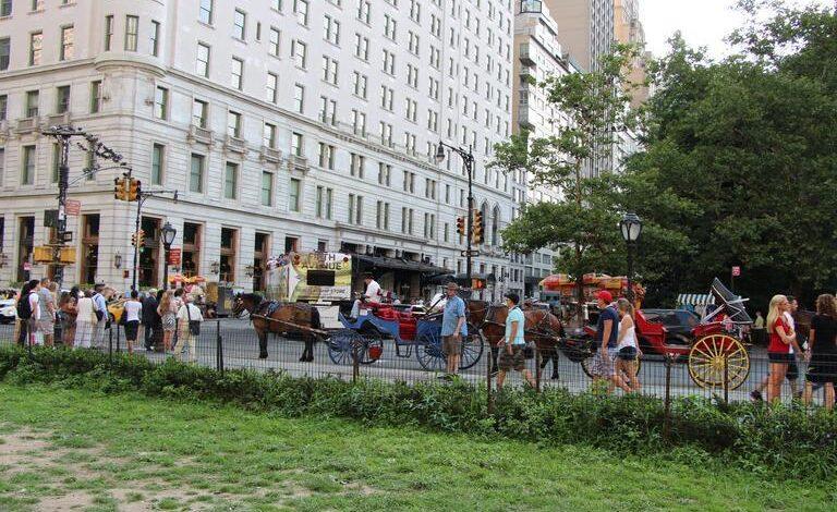 Photo of New York City- People and Economy